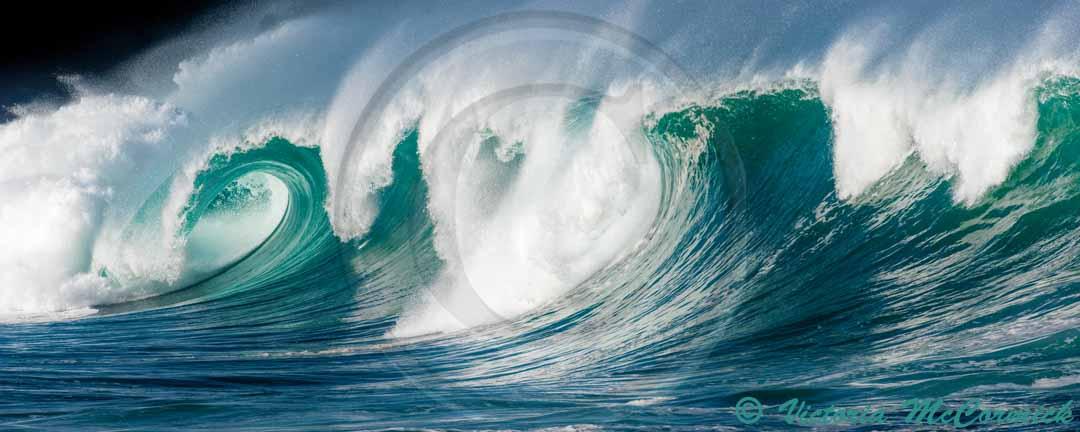 25 foot wave breaks in a long curl at Waimea Bay shorebreak
